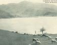 Vista sul lago Brasimone con gregge di pecore.